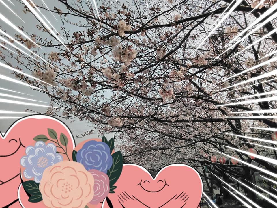 花見をしながらBBQ